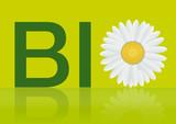 Fototapeta naturalny - ekologiczny - Znak / Symbol