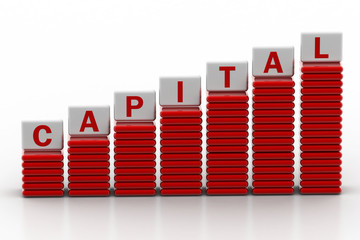 Increase in capital