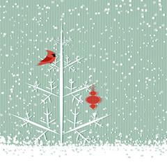 Sfondo invernale - Red Cardinal winter background