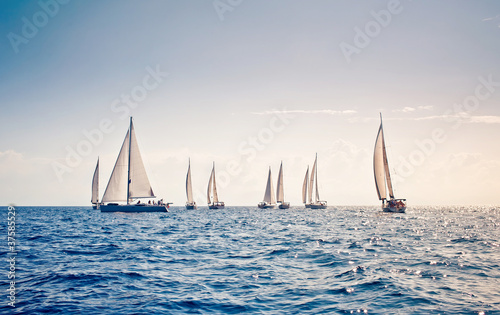 Sailing ship yachts with white sails - 37585529