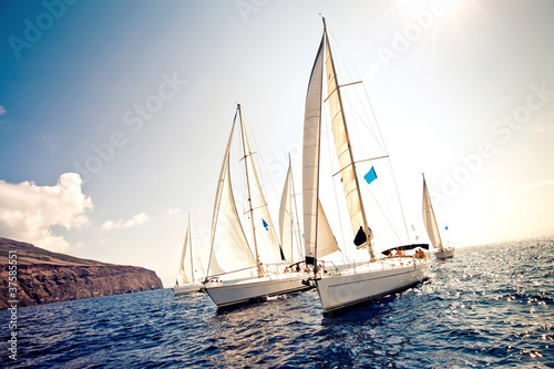 Sailing ship yachts with white sails - 37585551