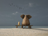 Fototapety elephant and dog sit on a beach