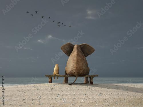 Leinwanddruck Bild elephant and dog sit on a beach