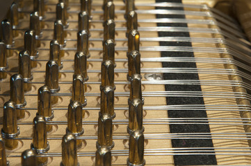the inside of a grand piano with strings and mechanics