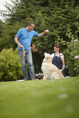 Couple playing with dog in backyard