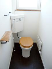 懐かしいトイレ