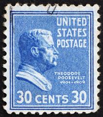 Postage stamp USA 1938 Theodore Roosevelt