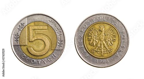 The Polish money (zloty)