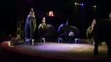 circo, lo show degli elefanti poster