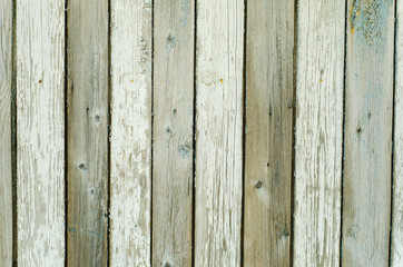 grunge wood wall background