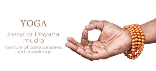 Yoga JNANA mudra