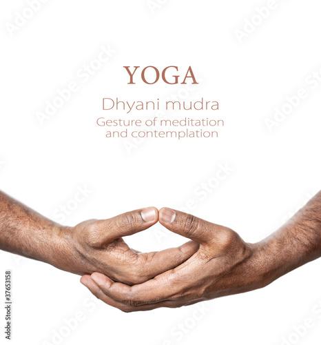 Yoga Dhyani mudra