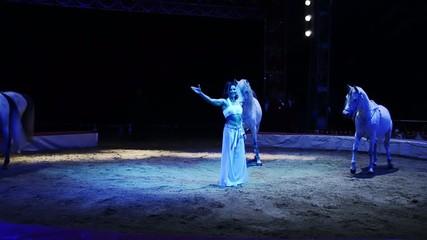 circo, i cavalli bianchi