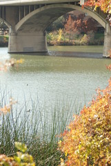 An autumn river flowing under bridge arches