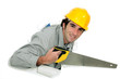 Tradesman holding a crosscut saw