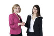 Elegant smiling businesswomen shaking hands
