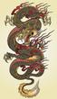Detailed Asian Dragon Tattoo Illustration