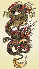 Detailed Asian Dragon Tattoo Illustration