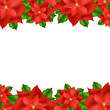 Red Poinsettia Border