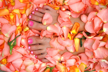 lacquered feet nails in rose leaves