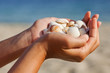 Hands holding sea shells.