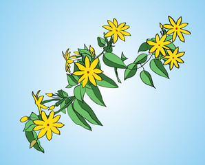 Branch with green leaves and yellow flowers