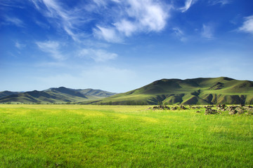 Vallée de Mongolie