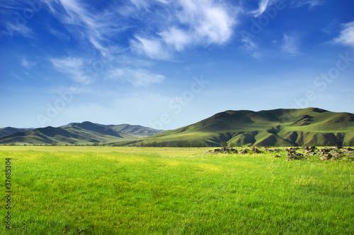 Leinwandbild Motiv Vallée de Mongolie