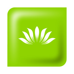 water lily, Green Eco friendly business logo design