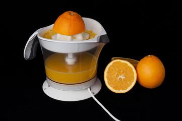 Citrus Juicer and oranges