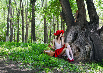Little Red Riding Hood in dreams