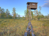 Wooden Path leading through a marsh to tower for birdwatching poster