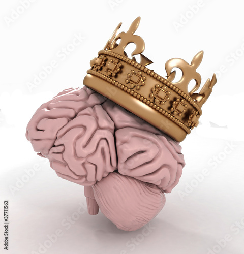 brain with crown on a white background