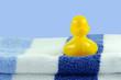 Ente auf Badetuch