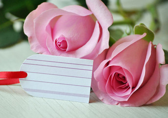 Zwei Rosen mit Geschenkanhänger