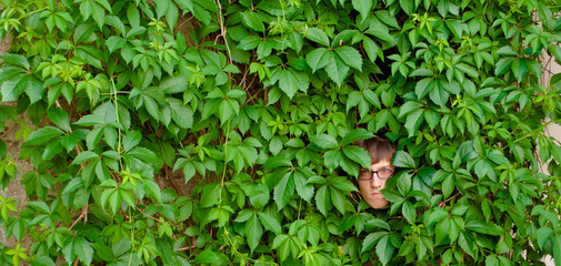 Face among ivy.
