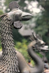 The Empress Bird Statue with Dragon in the Back - Forbidden City