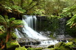 Fototapeten,wasserfall,tasmanien,australien,urwald