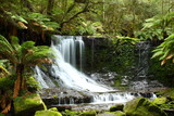 Fototapety Gorgeous Russel Falls in Tasmania, Australia.