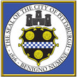 usa syayes city county seal coat emblem