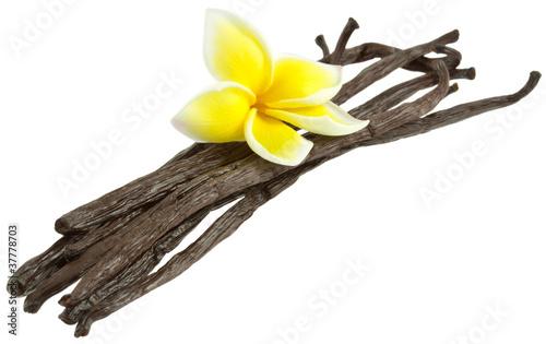 fleur de frangipanier sur gousses vanille Bourbon