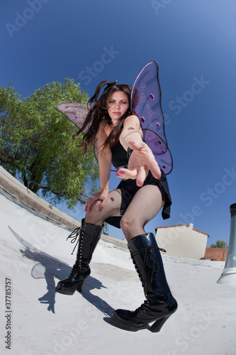 Fairy On Roof