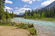 Vermilion river at Kootenay National Park in Canada