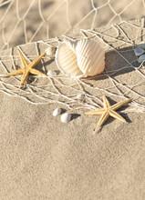 Stillleben avec des étoiles de mer, des scènes de plage, Sommersonne