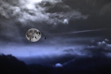 notte buia invernale