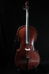 violoncelle - cello