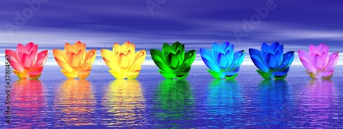 Lily flowers chakras by night