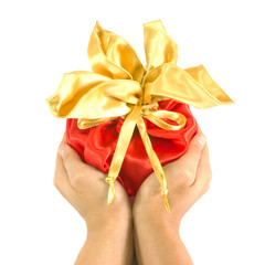 holding luxuly bag of gift