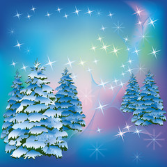 Winter background with fir-trees