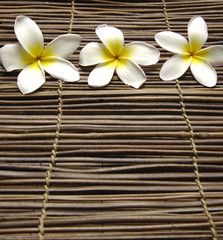 White towel with set of frangipani on stick straw mat